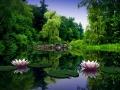 Amitabha Dream Yoga Houston TX